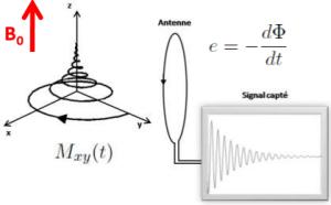 Signal_IRM